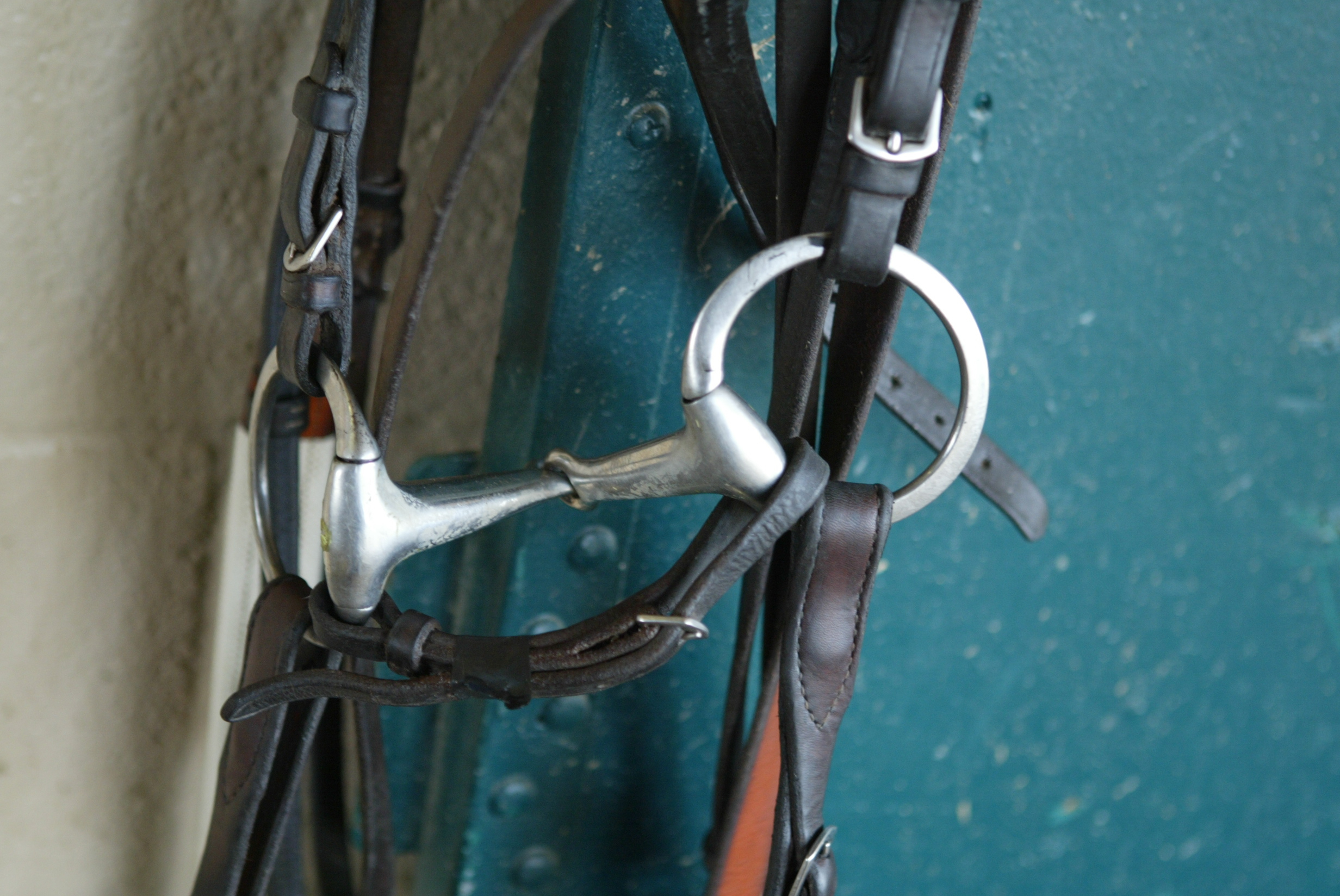 The fat, egg butt snaffle is popular with many trainers as is the standard ring bit