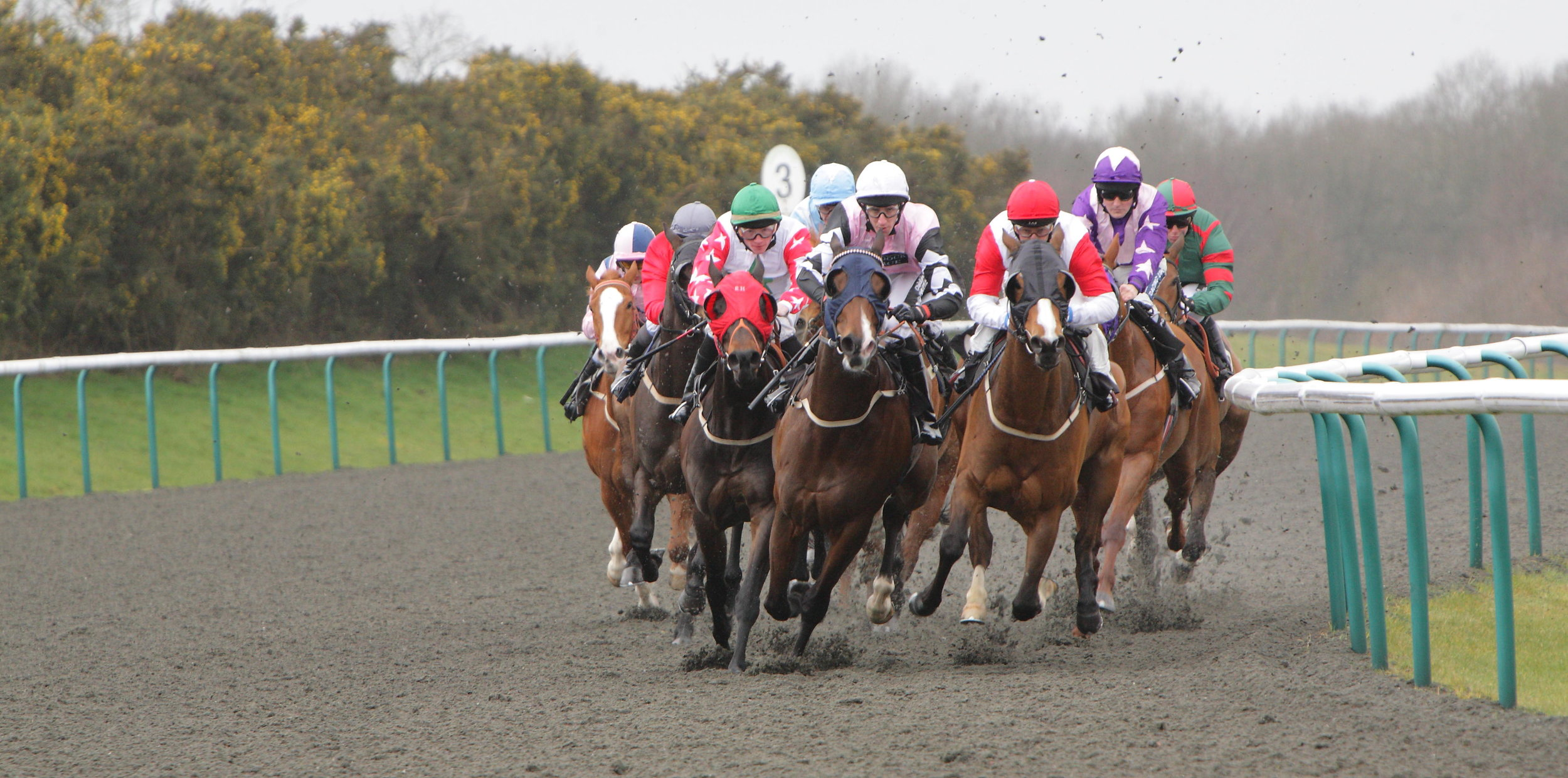 """Is All-Weather Racing No Longer The Poor Relation?      For much of 2018, racing fans waited with bated breath for the return of Enable. Musings on when and where the wonder mare would reappear were many and varied, but few predicted that the Arc De Triomphe heroine would make her seasonal debut at Kempton on the polytrack surface.     Almost two years prior, the regal Juddmonte homebred, who had garnered high regard at home, made her very first racecourse appearance on Newcastle's Tapeta track. That fateful day was the 28th of November 2016, when, of course, flat racing had left the turf for the winter months, narrowing John Gosden's choice to two: run his future star on the all-weather, or not until March.     Gosden did, however, have turf options in September of 2018, and when quizzed on the decision to run a then five-time Gp1 winner on the all-weather, he had no hesitation: """"We had aimed Enable at York, but it came about a week or ten days too early, so Kempton came at exactly the right time. The fact that it was on the all-weather didn't concern me, as I knew exactly what I was going to get.""""     For Enable's return in the Gp3 September Stakes, the going was described as standard to slow, whereas on the very same day, Ascot raced on good to firm (good in places), while the going at Haydock was heavy. There are few surprises in the going on the all-weather; after all, the clue is in the name, and its consistency is very much appreciated by John Gosden, who says, """"When the ground goes too firm in the summer, or during drought, or it becomes bottomless at the end of autumn, the all-weather is a nice place to be. It's consistent, with bounce, and you can ride a proper race on it.""""     It would, however, be unfair to look at all-weather racing as one entity, with """"all-weather"""" encompassing various surfaces, mainly fibresand, polytrack and Tapeta™. Not only this, but each racecourse has its own shape and quirks, as well as its own race programme. Just as on the tur"""