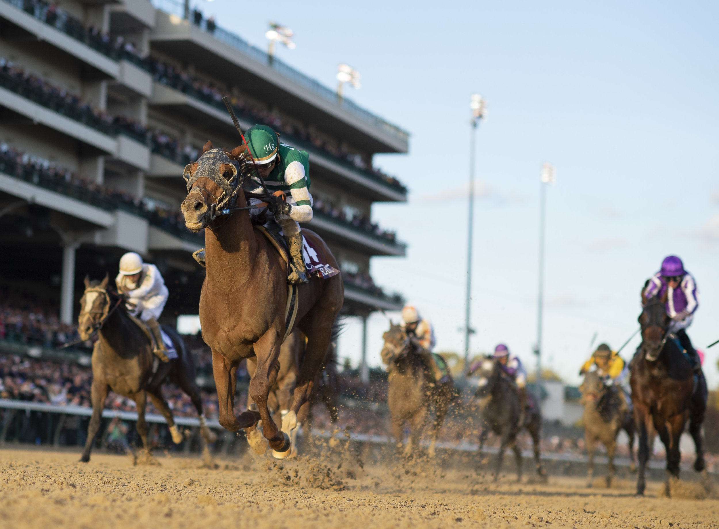 Accelerate, ridden by Joel Rosario, wins the Breeders' Cup Classic