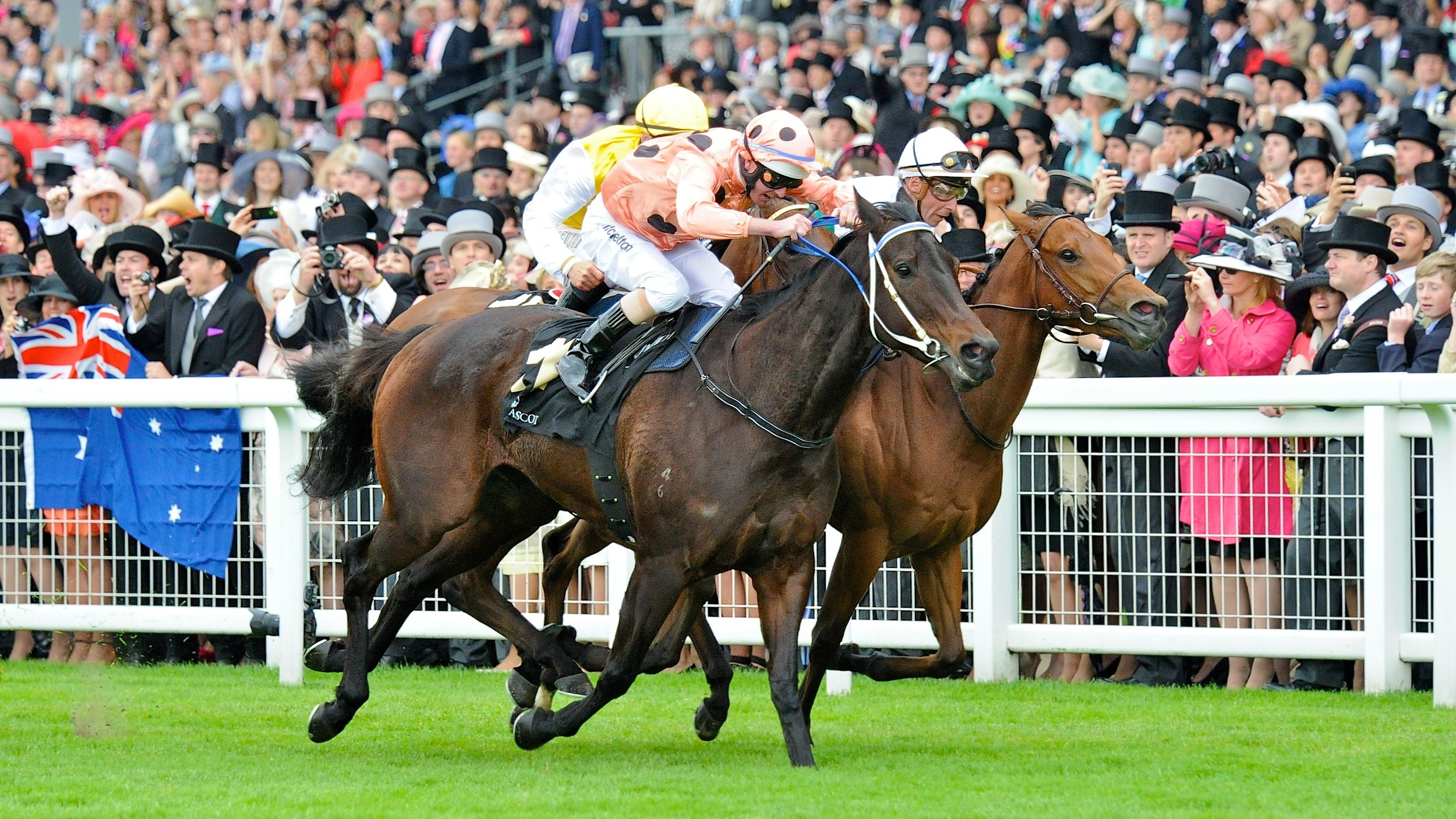 Black Caviar wins the Gp1 Diamond Jubilee Stakes at Ascot