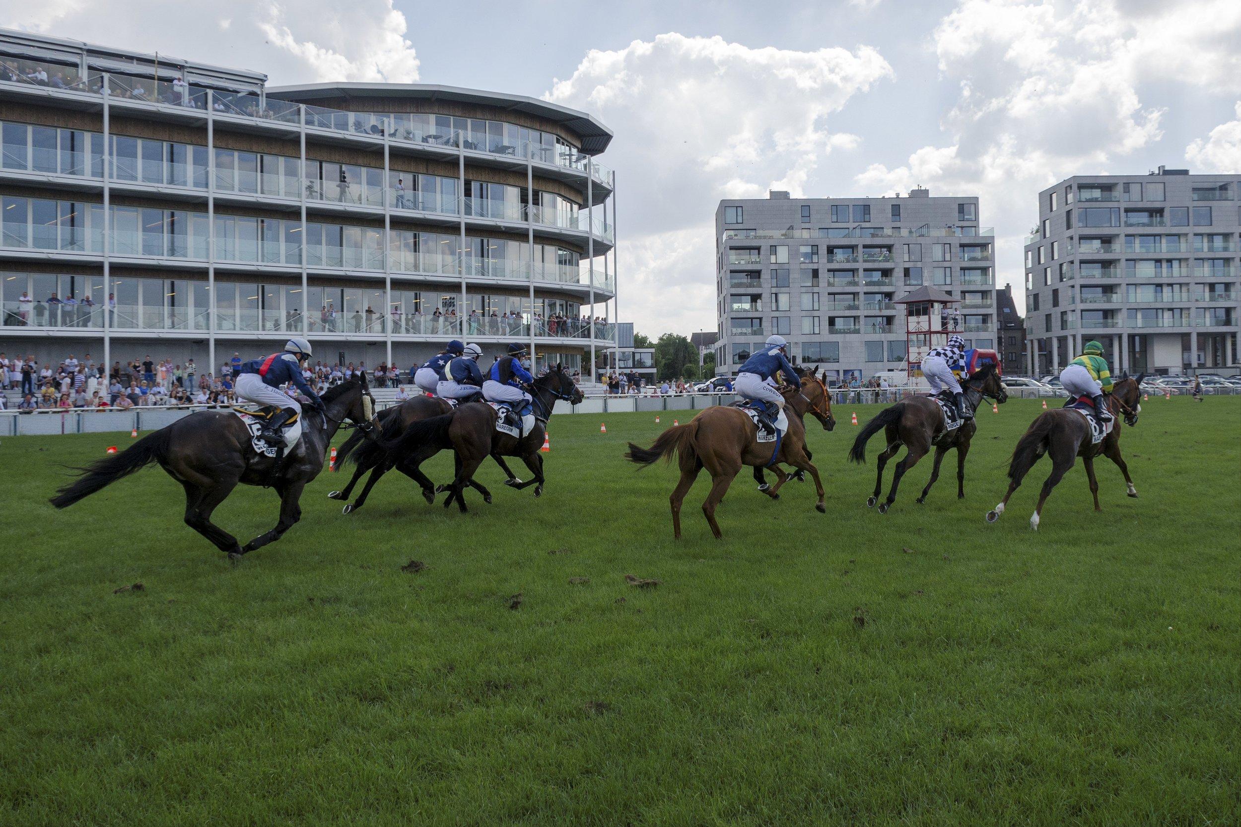 Flat Racing comes to Waregem.