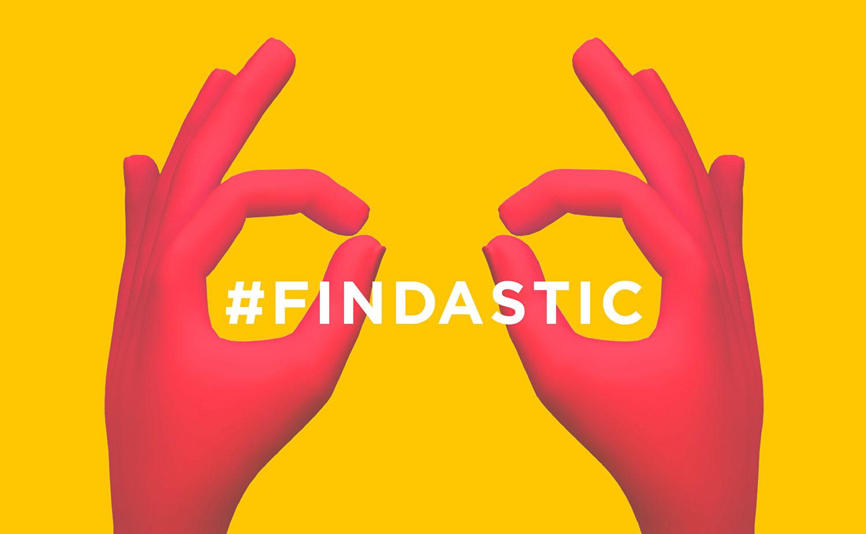 findastic2.jpg