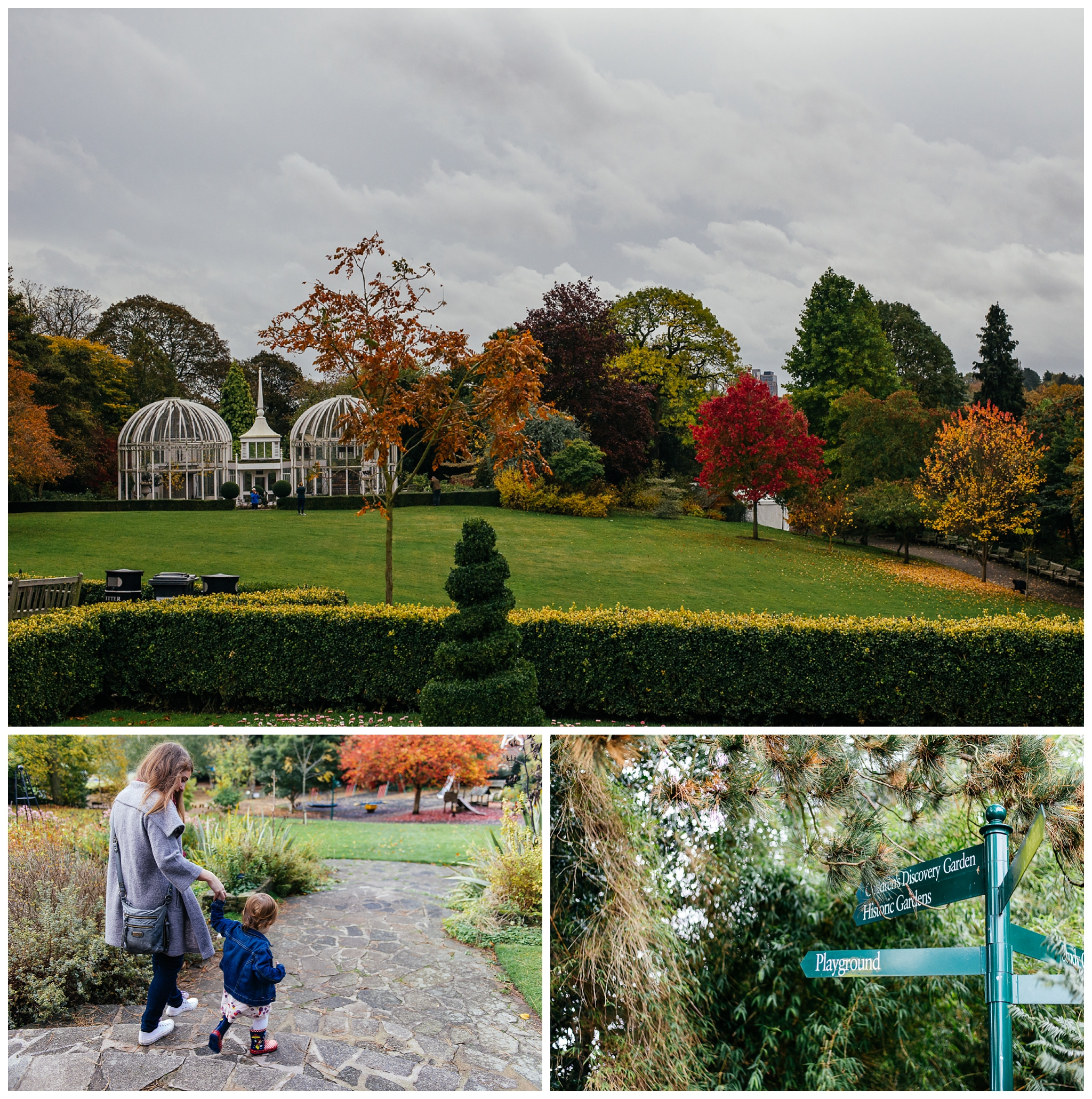 Autumn-family-portraits-birmingham-photographer_0001.jpg