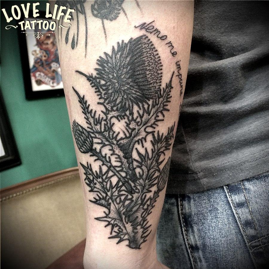 татуировка растения