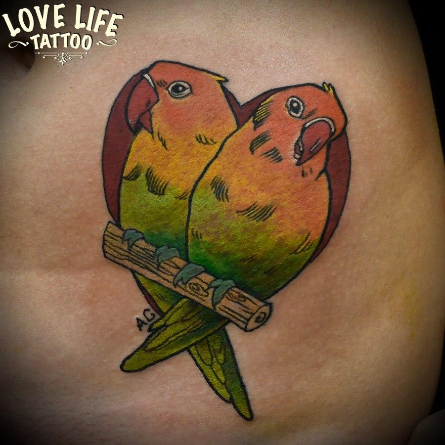 татуировка попугаев
