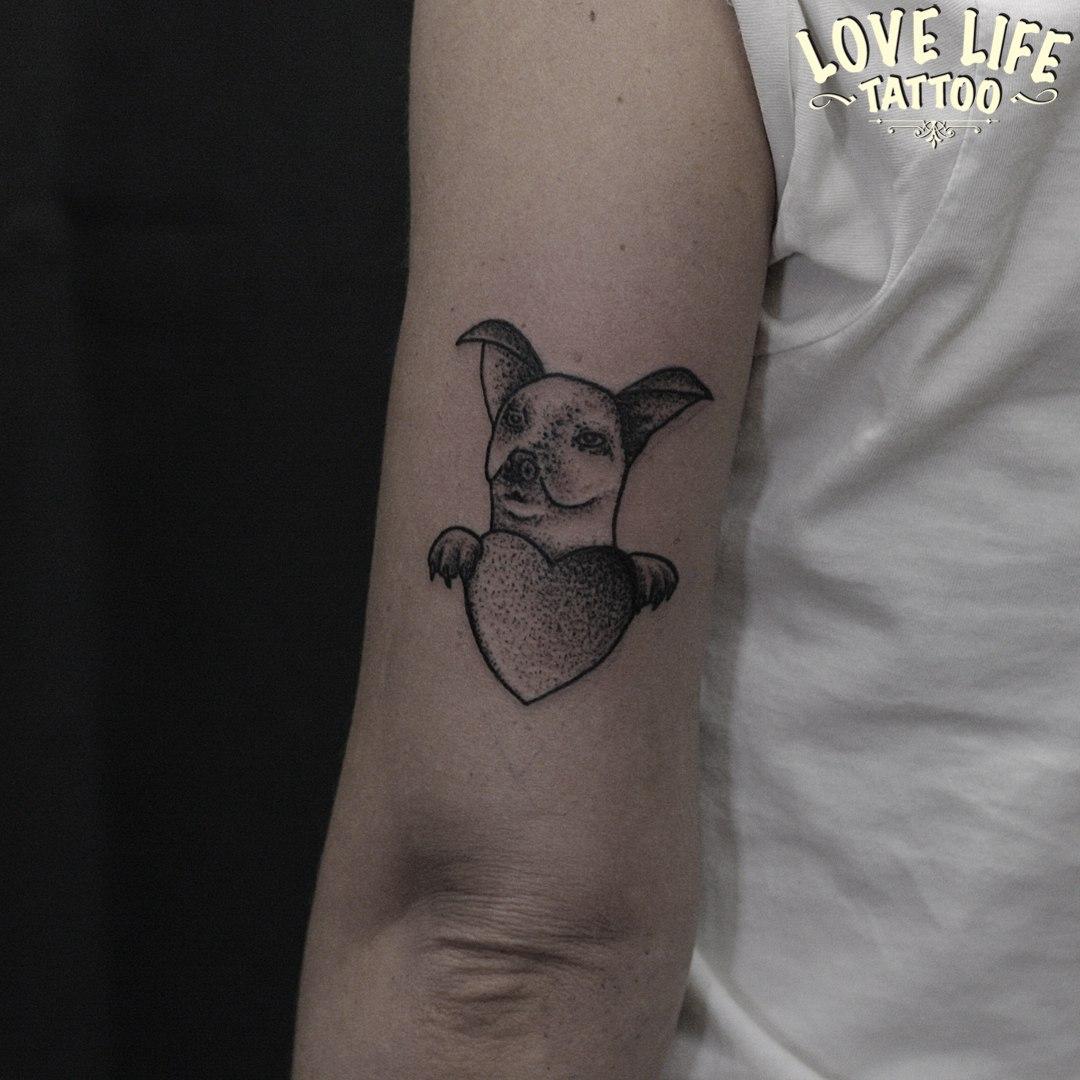татуировка любимой собаки