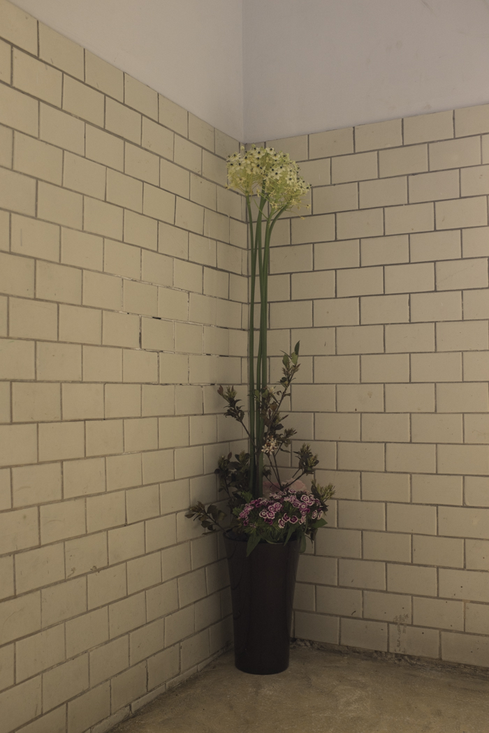Lovely flowers in our hallway