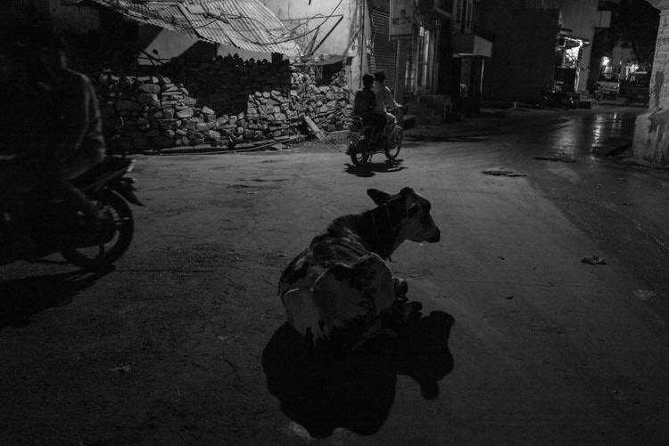Good night Jaipur