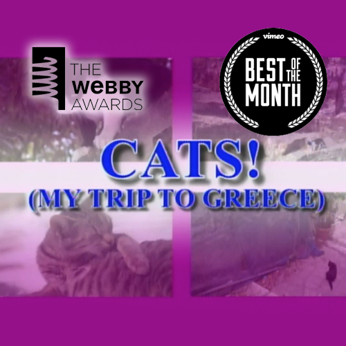 CATS! A TRAVEL MUSIC VIDEO