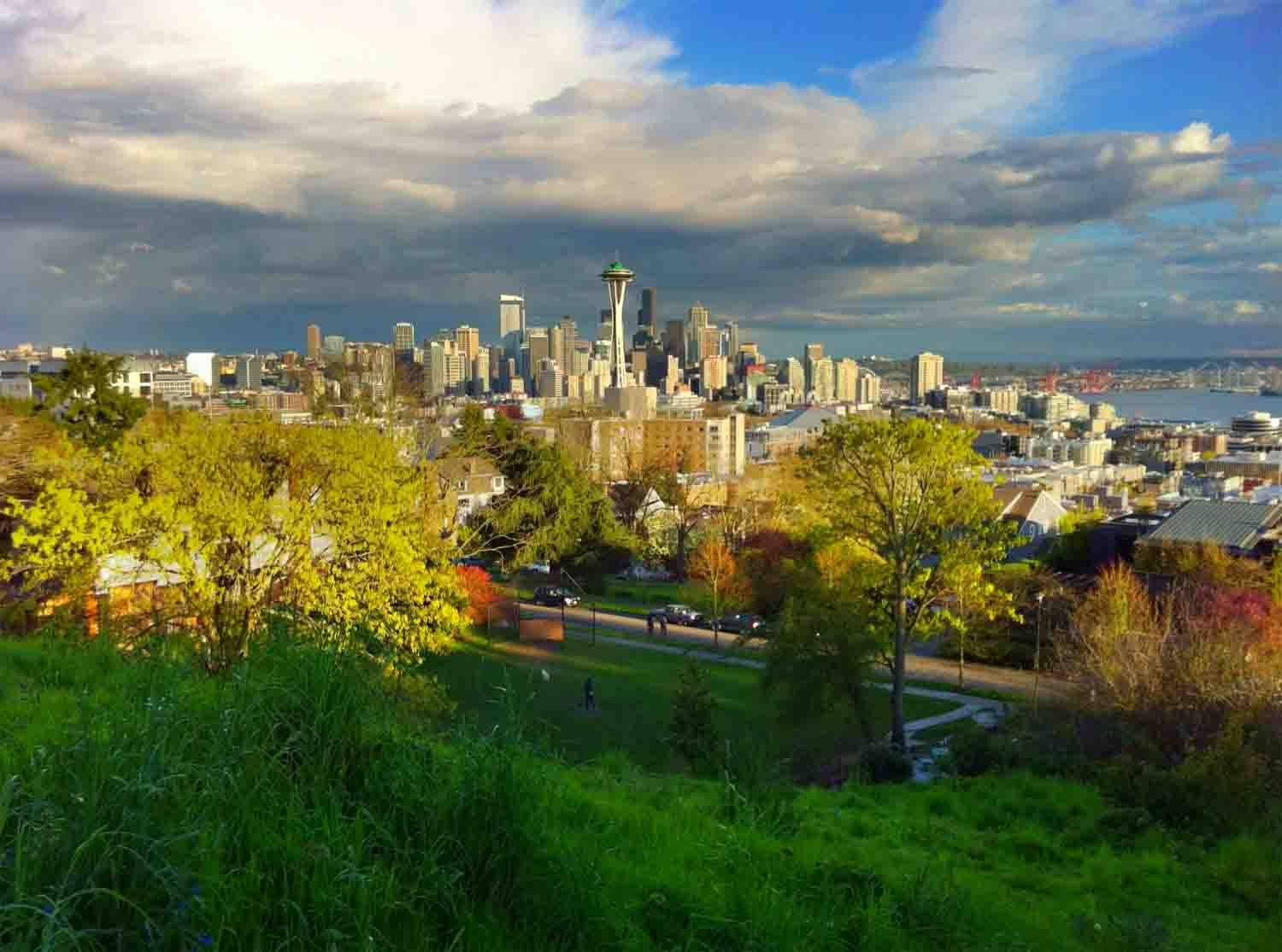 Seattle skyline from Queen Ann Hill copy.jpg