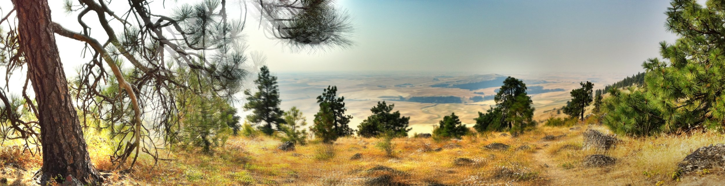 Panorama - at the top of Kamiuk Butte  - 1000 feet - a hazy day from fires burning in Idaho