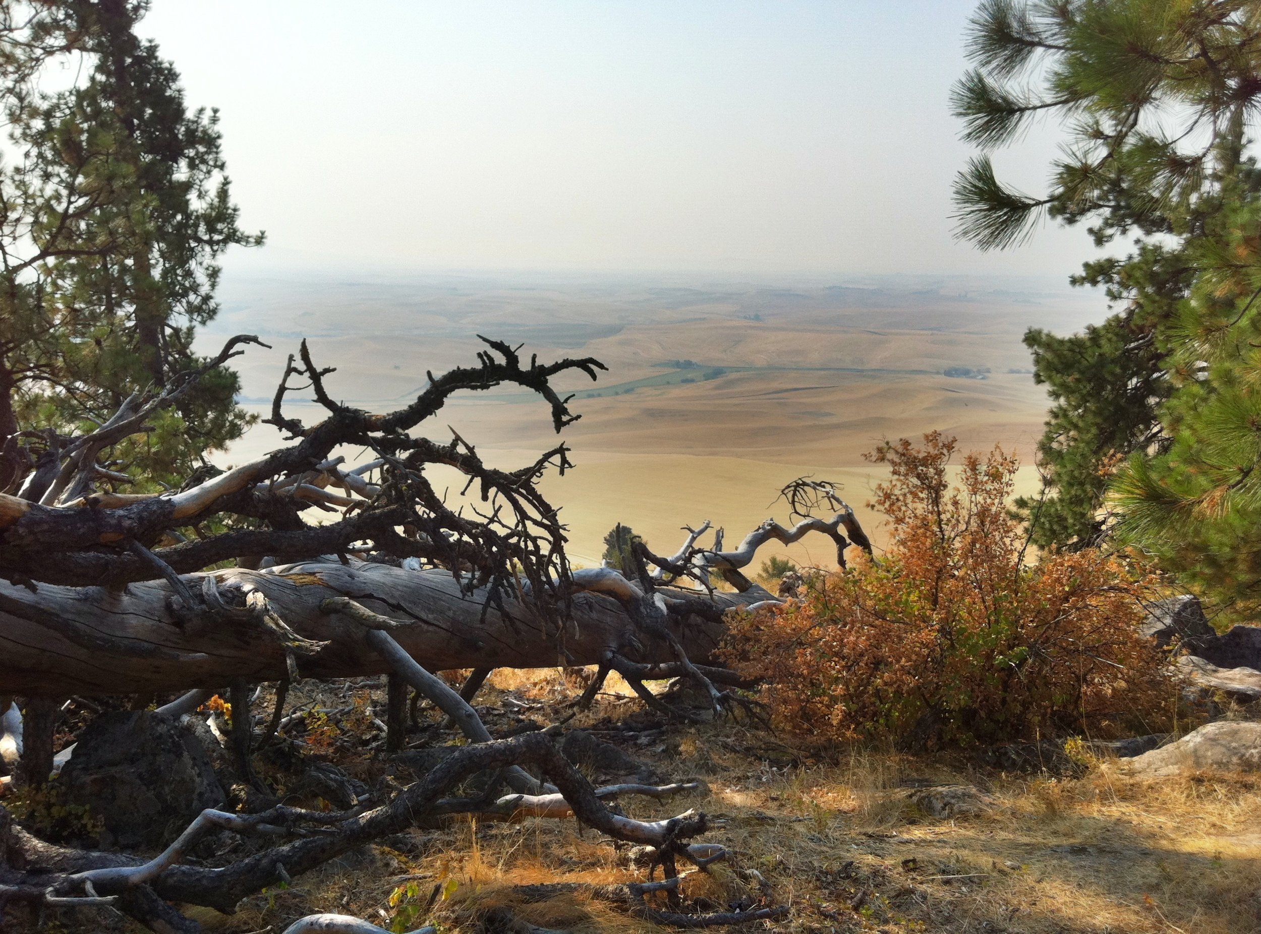 Kamiuk Butte - a hazy day - fires burning in Idaho