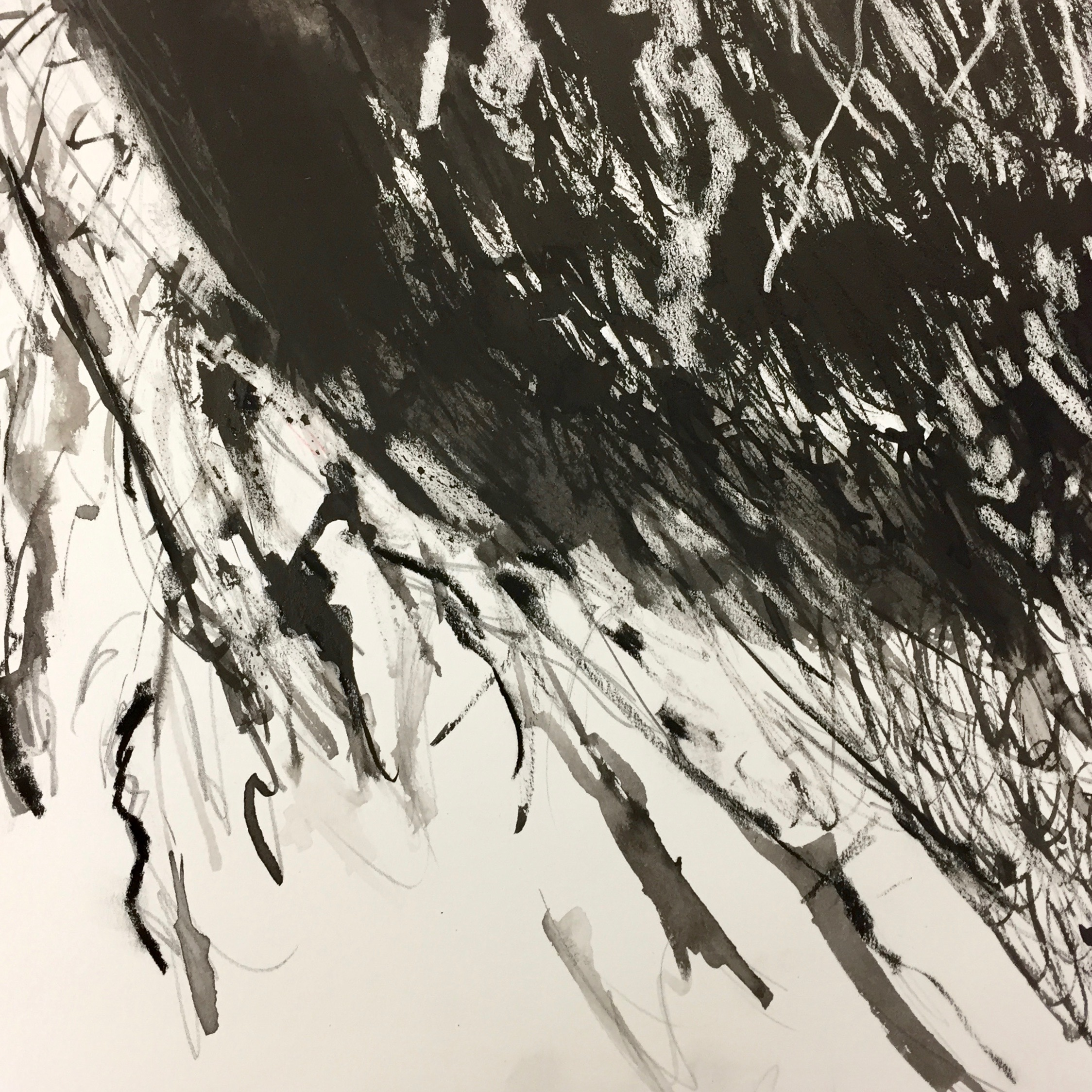Sumi-E Ink drawing
