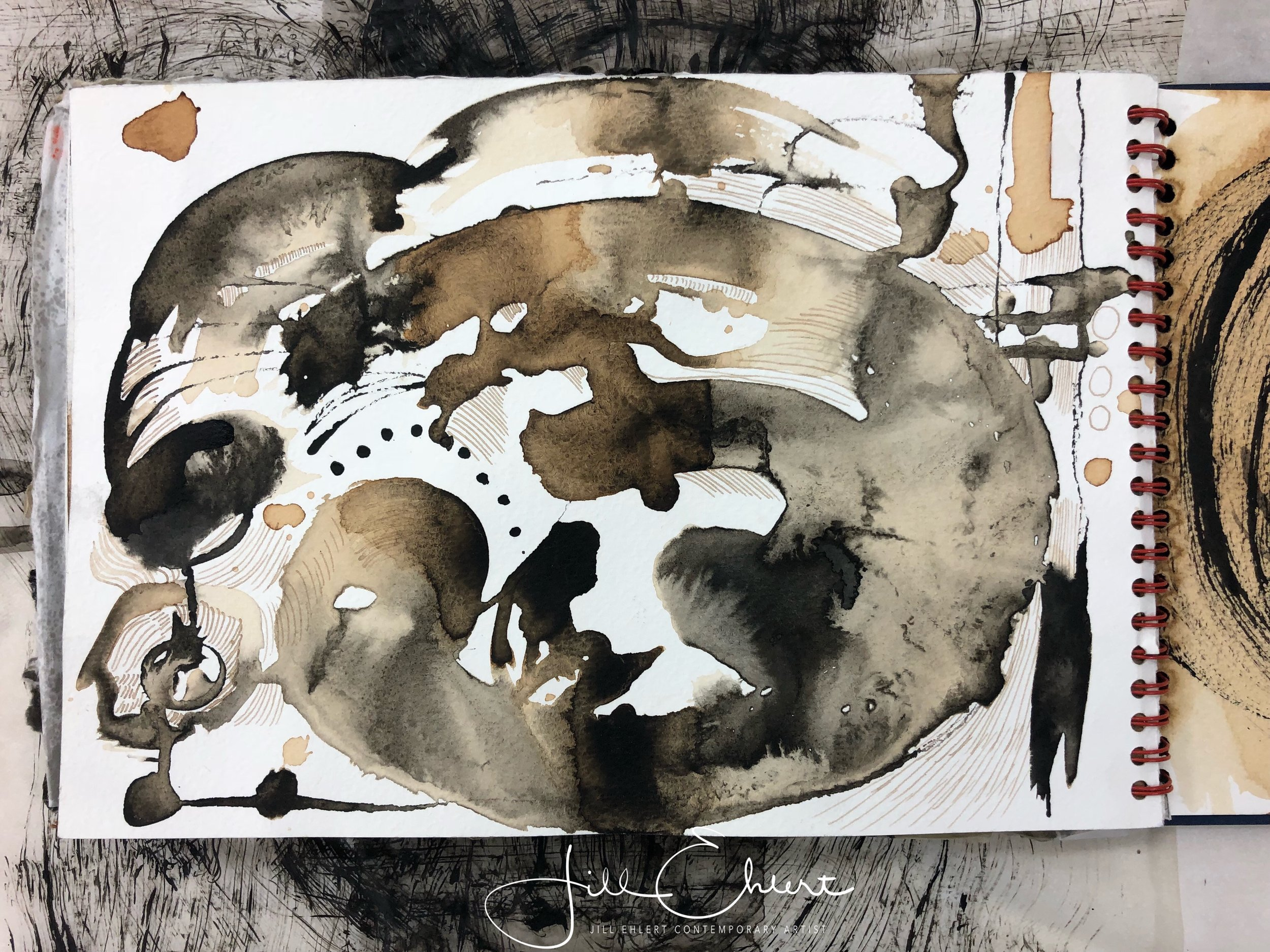 Fluid drawing with India ink and walnut ink.
