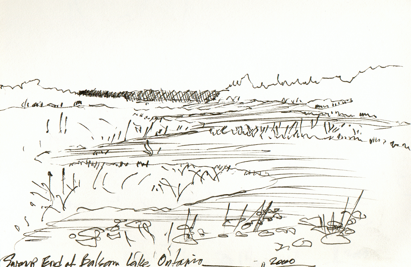 The Swamp  Balsam Lake, Ontario 2000