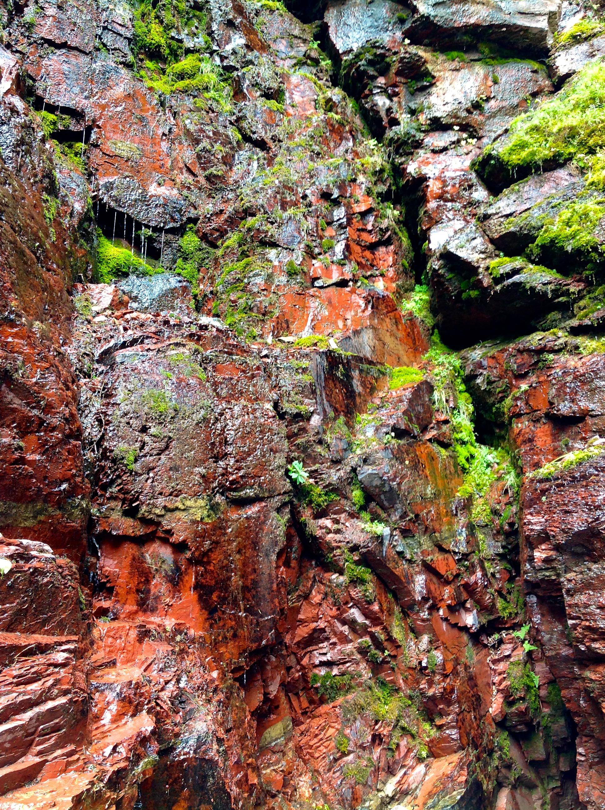 Water Moss Rock   RRC
