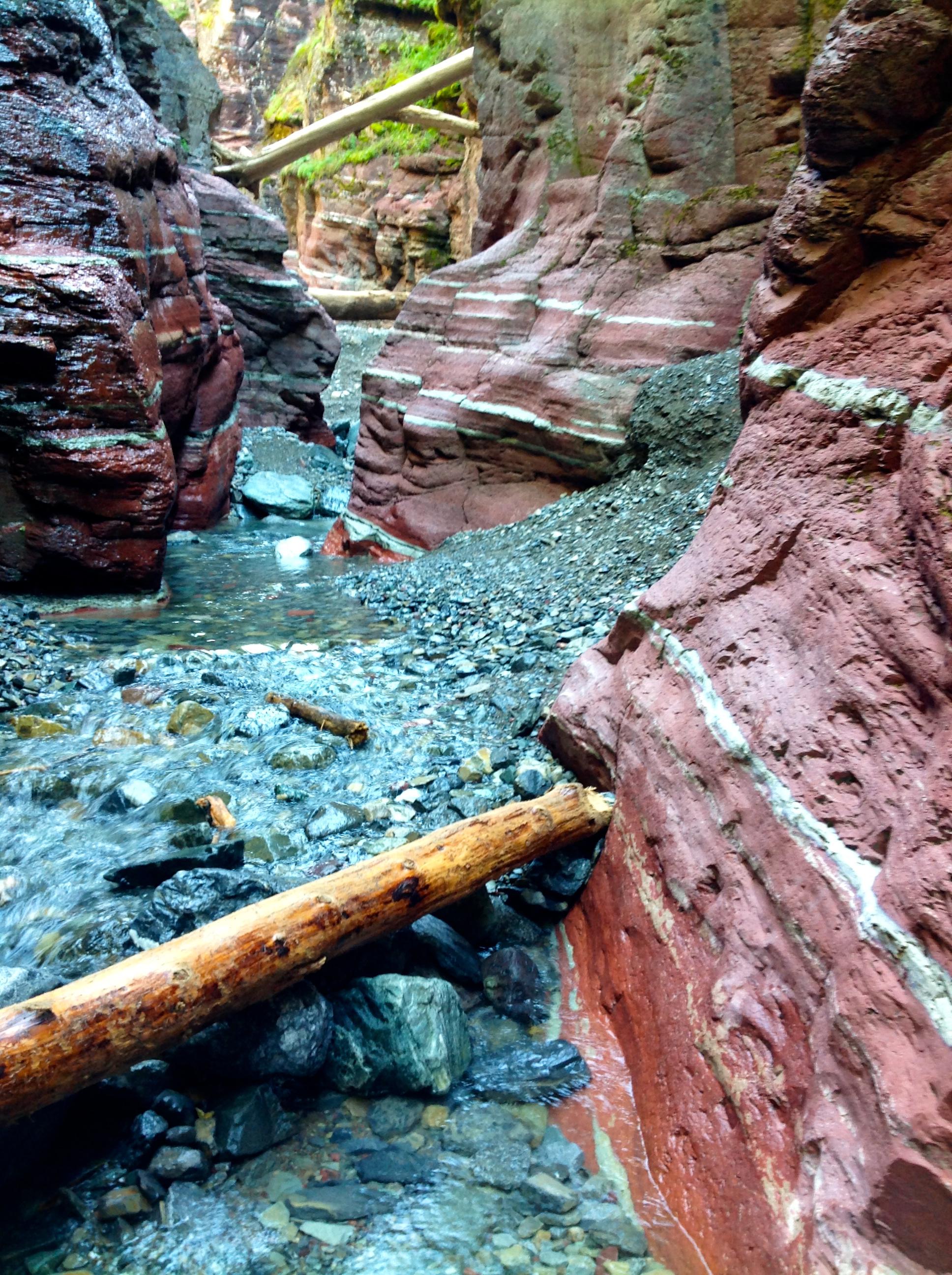 Canyon Floor 1   RRC