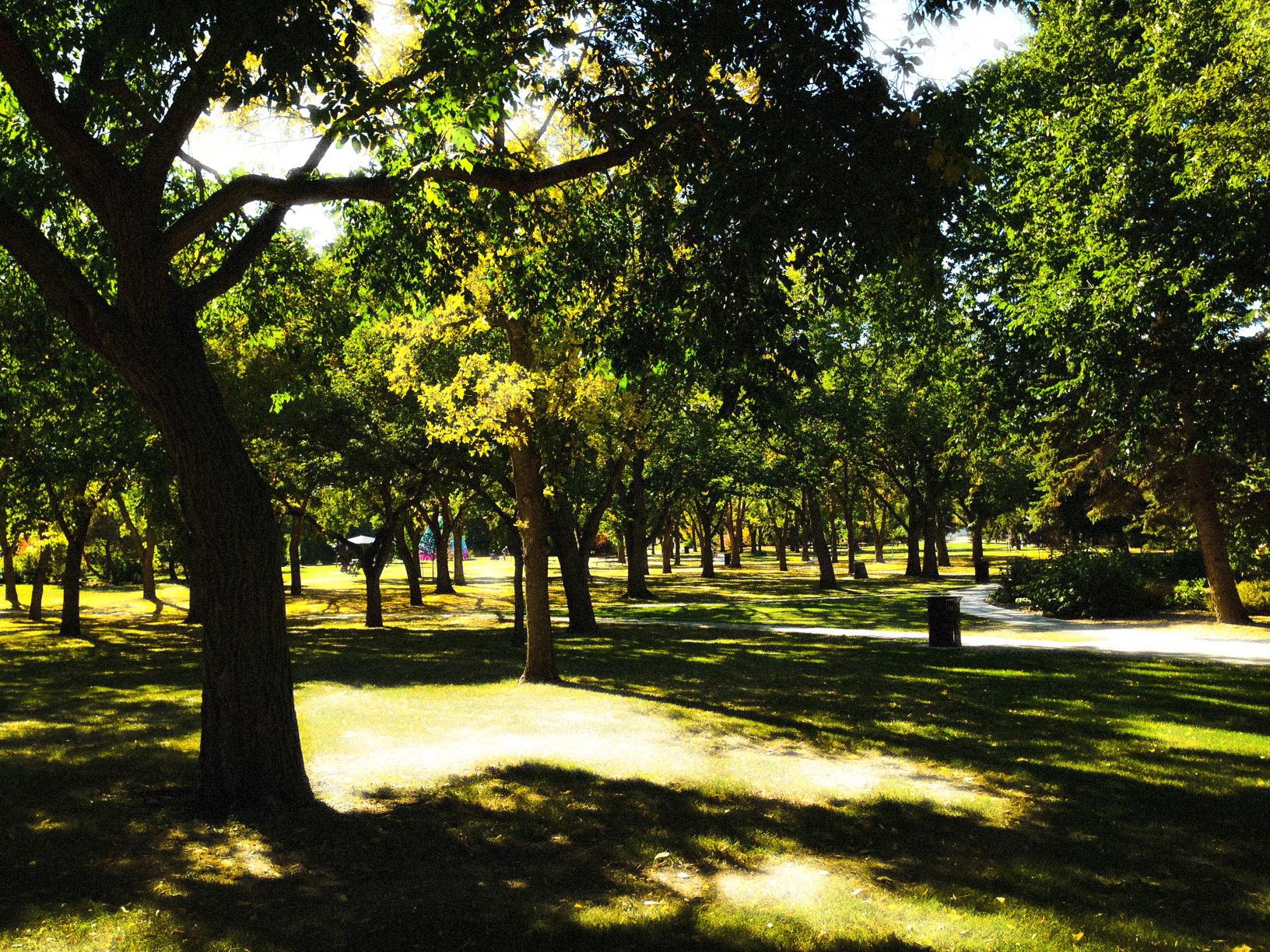 The Grove, Borden Park, Edmonton, Alberta, VH 2014
