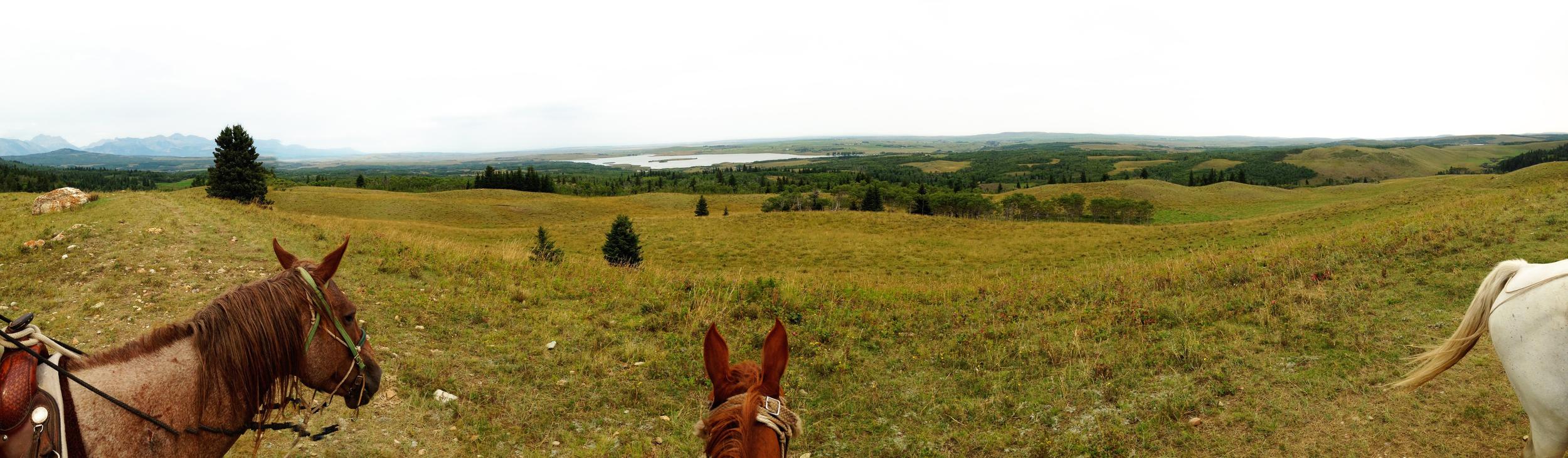 Deep Country  Waterton,Alberta, VHS / Miro Kerr-Hoy, August2012