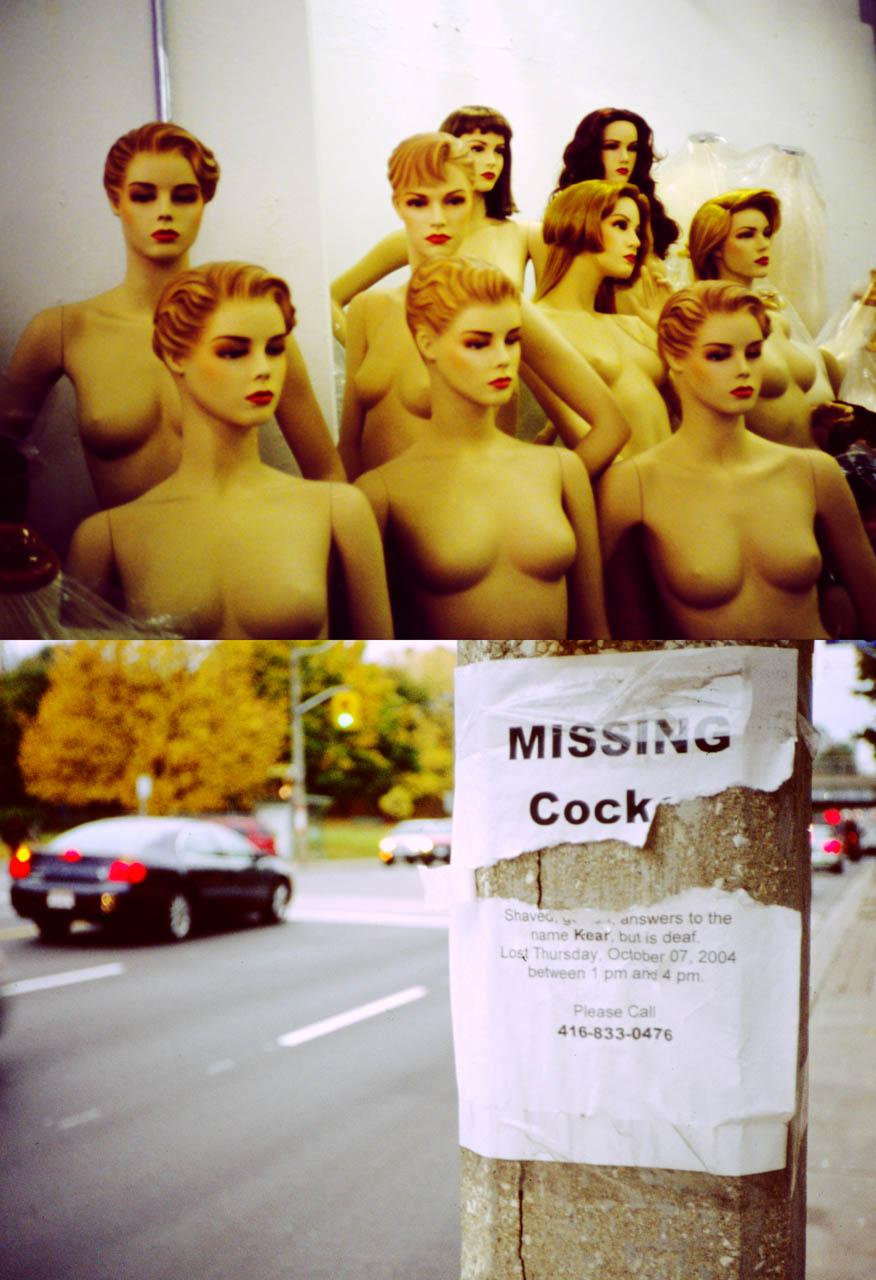 missing_cockFLAT.jpg