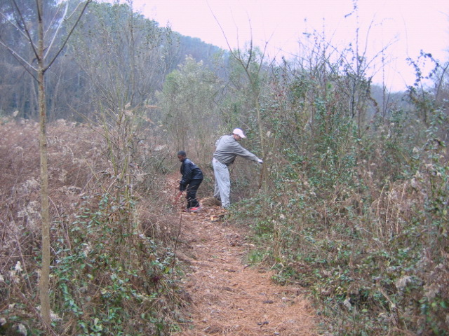 January 2010:Trail clearing begins