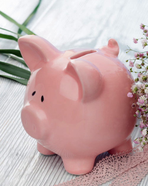 piggy bank C.jpg