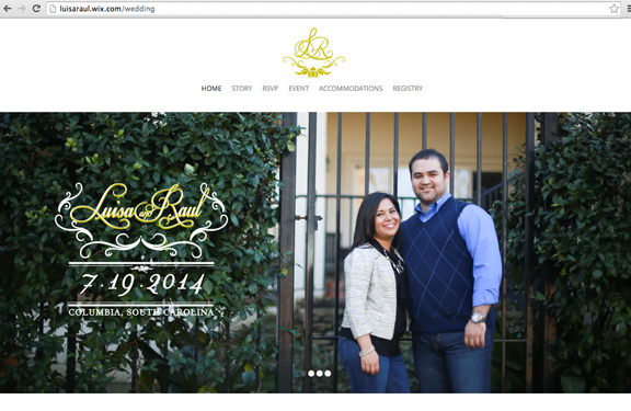 raul_luisa_website_homegig.jpg