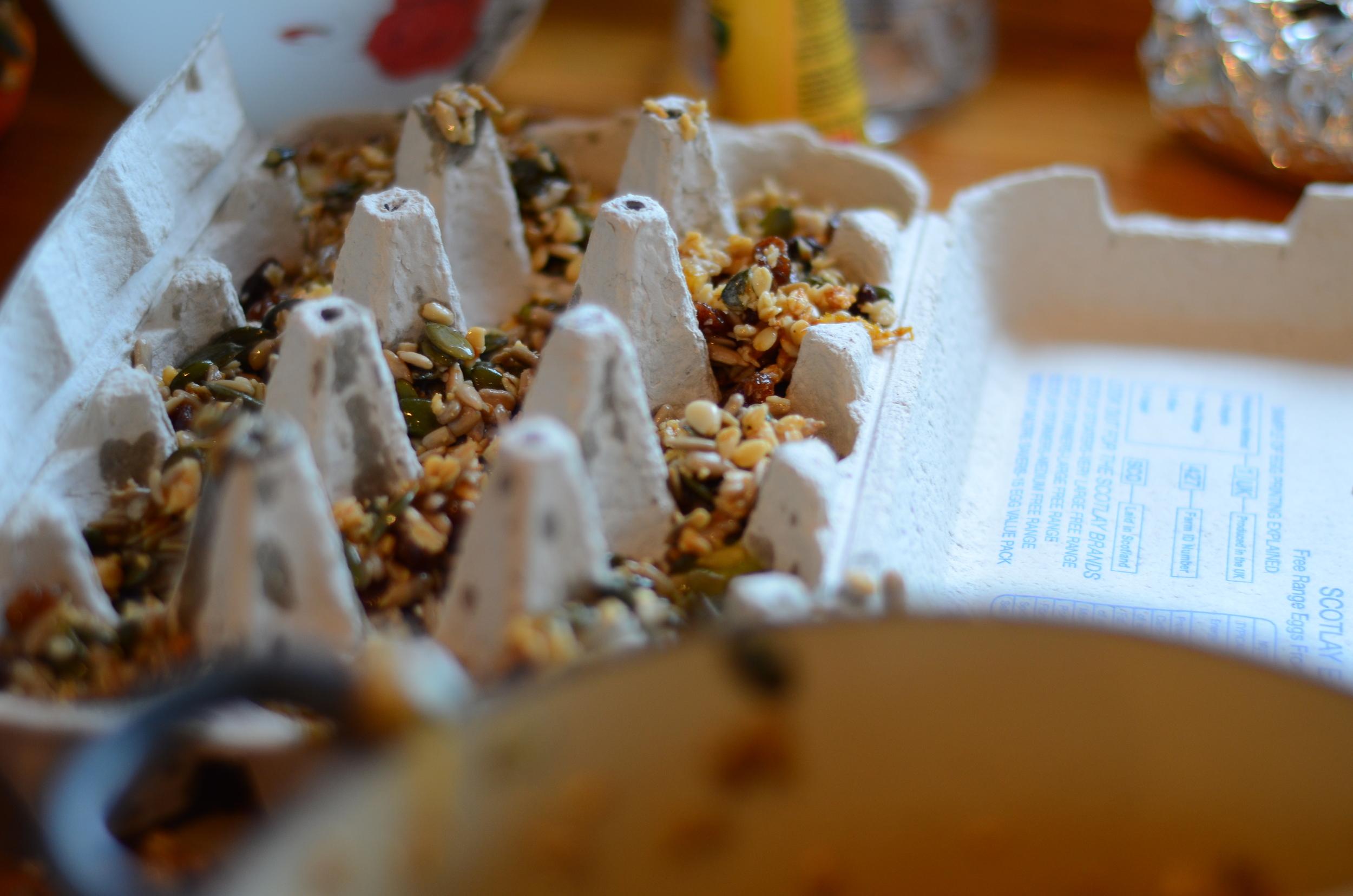 bird feed 3.jpg
