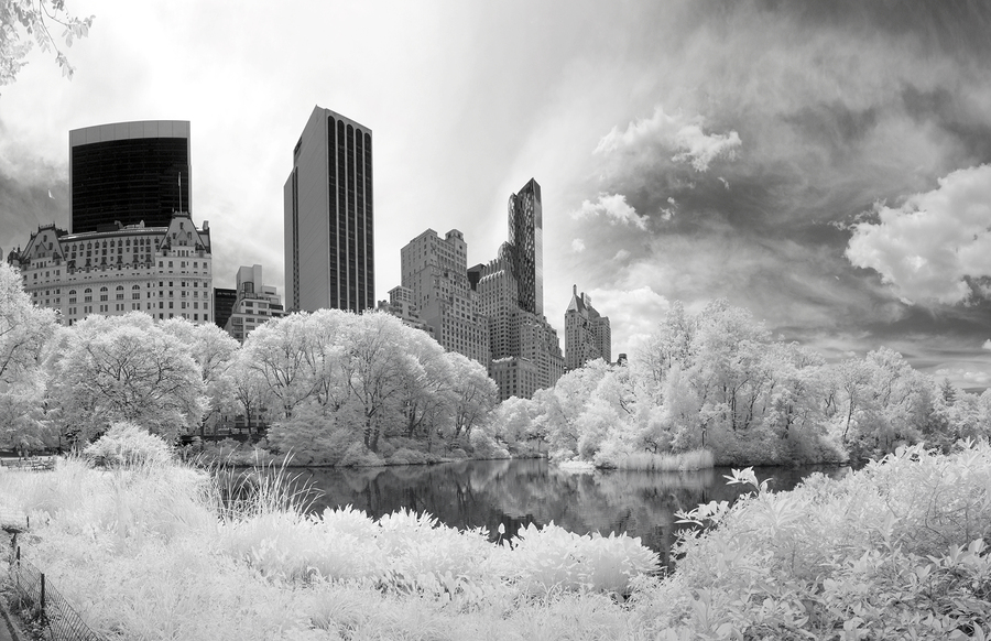 View from the lake at Central Park