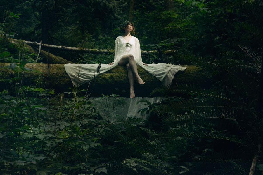 fairy-on-the-tree.jpg