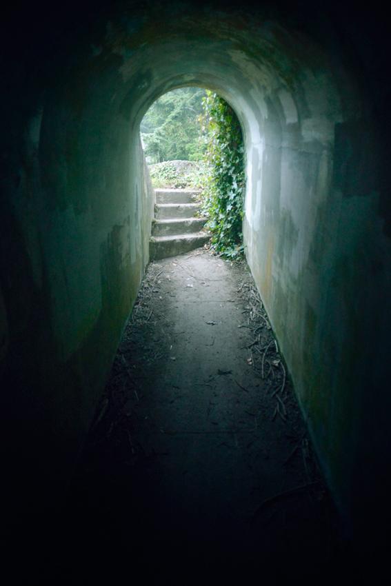 cori-storb-forest-doorway.jpg