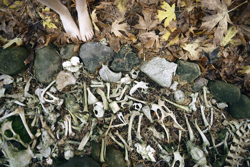 cori-storb-bone-tree.jpg