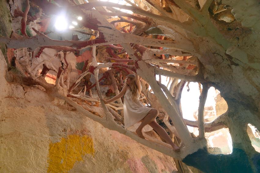 cori-storb-imagination-tree.jpg