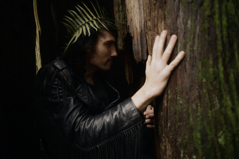 cori storb_forest king
