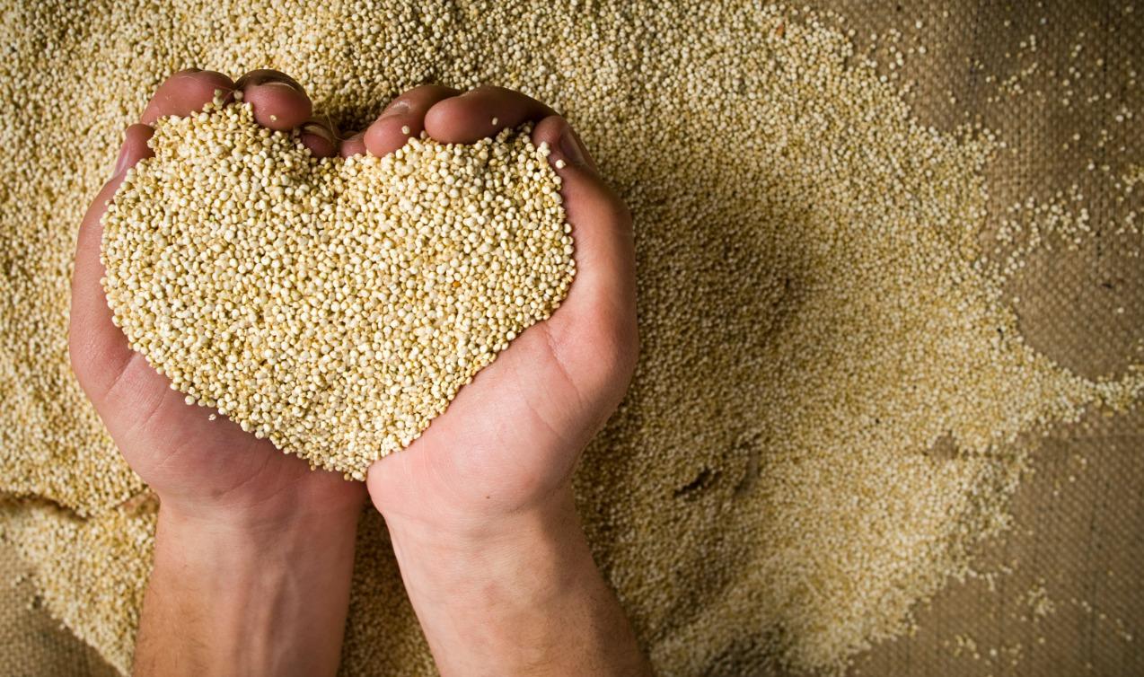 Blog-post-Quinoa.jpg