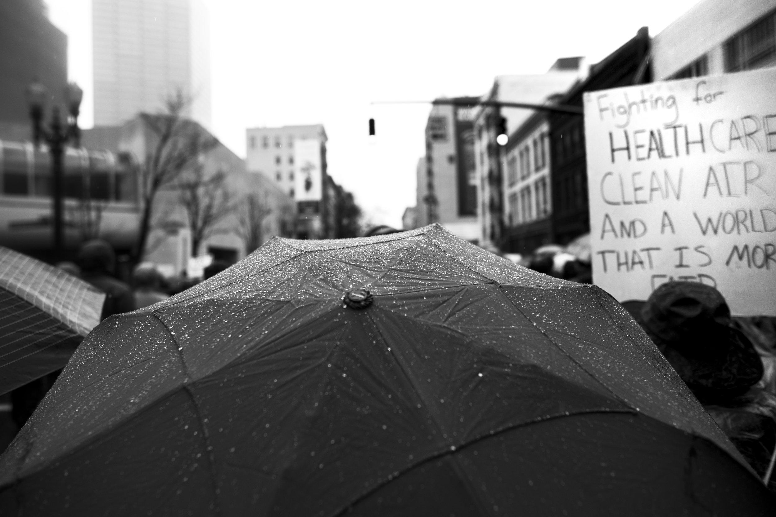 Women's March Portland-5.jpg