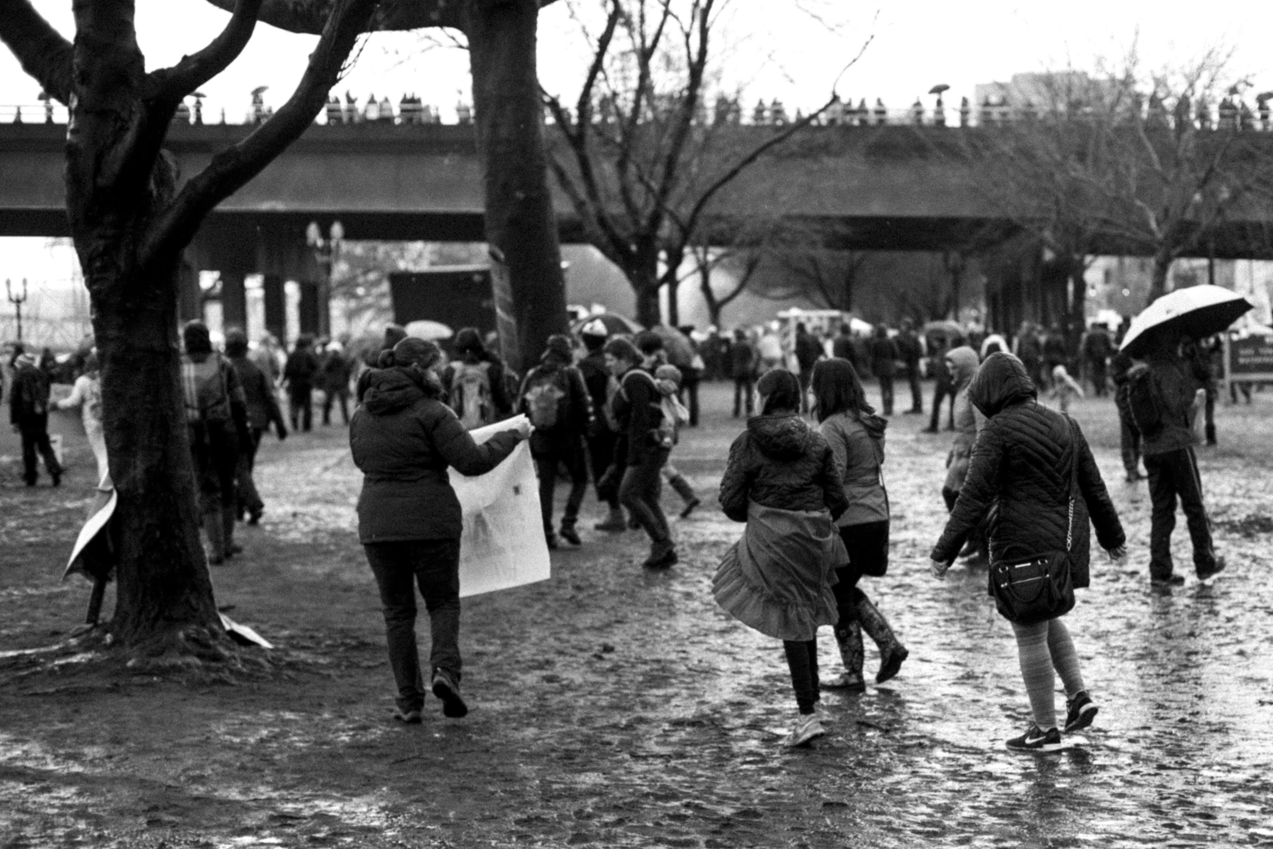 Women's March Portland-12.jpg