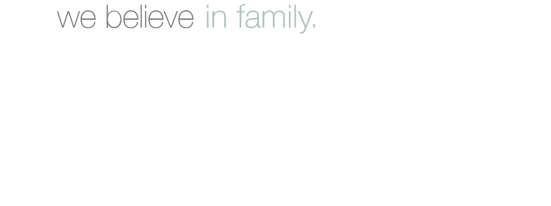 FSI_Manifesto_family.png