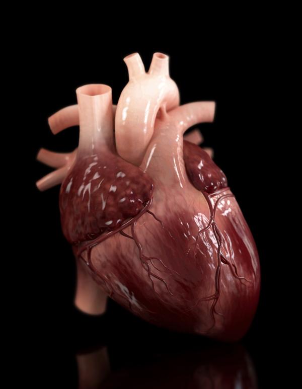 Rheart.jpg