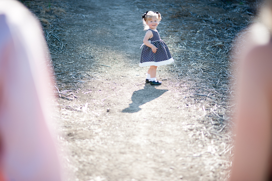 little girl in the sunlight Danville family photography