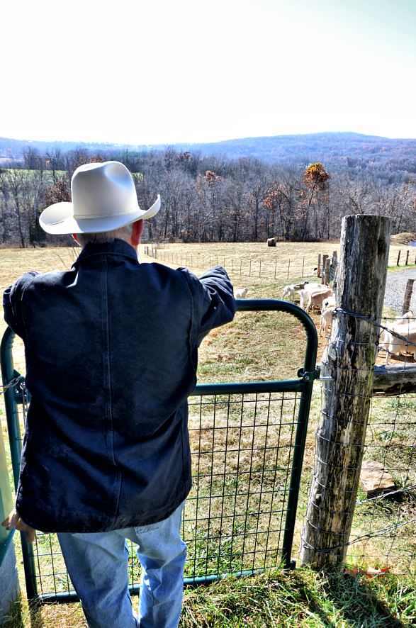 A farmer surveys his land in rural Arkansas