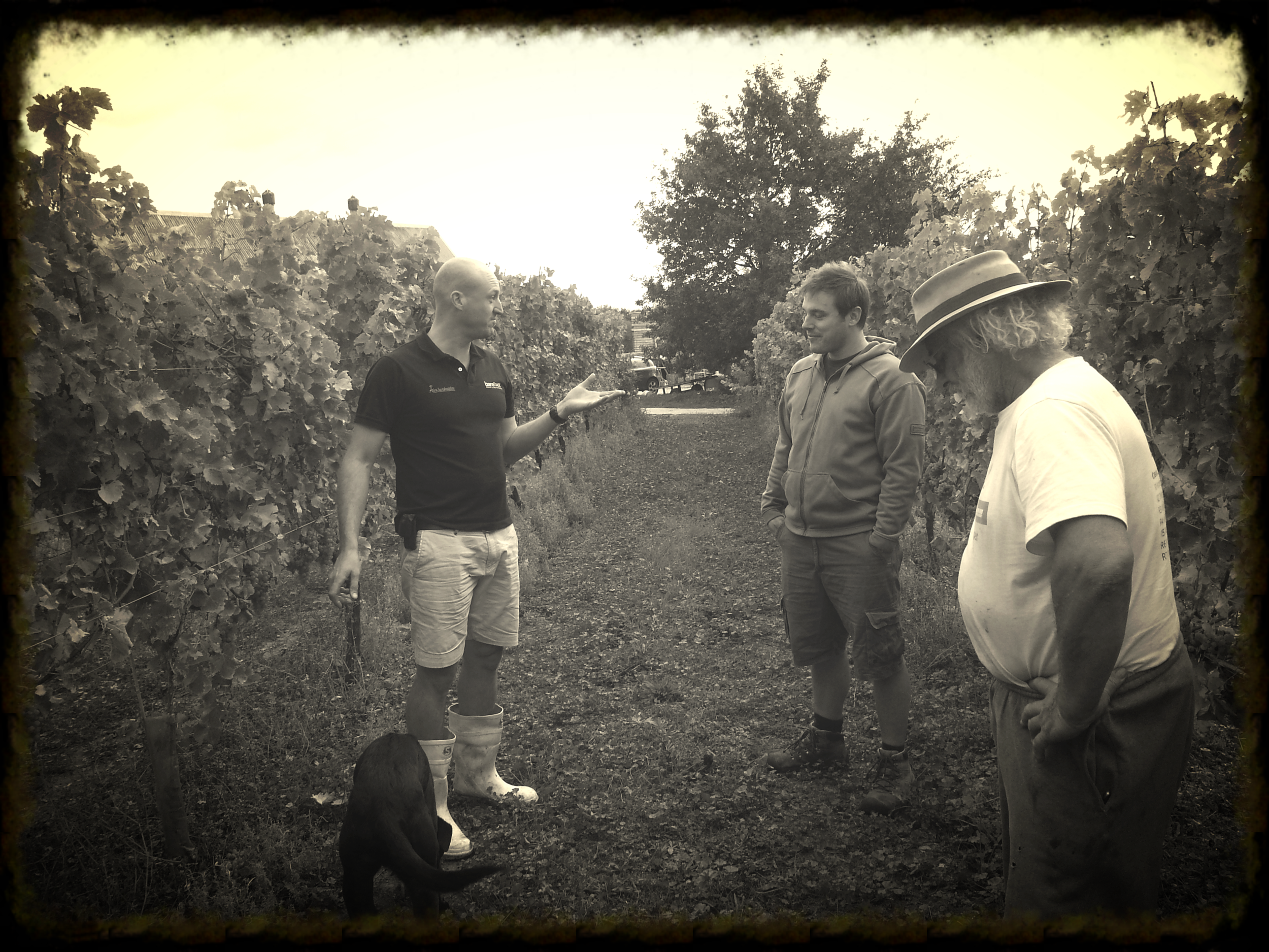 David, Soren and Adrian (grape grower and owner of Four Hawk Day) discuss whether the teachings of Kierkegaard are an influence of 8 Wired's beers, amongst other things.......