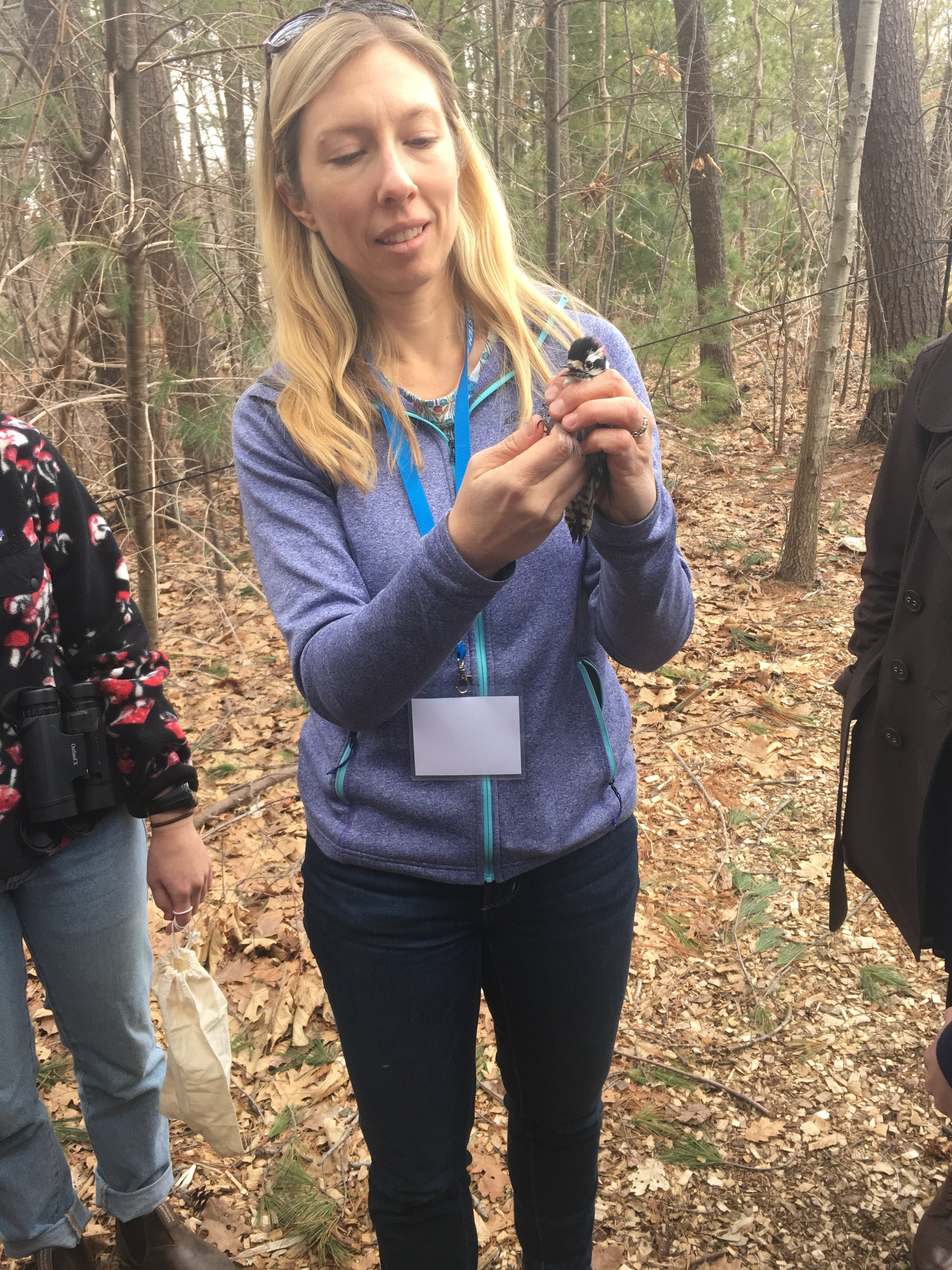 Professor Jessie Knowlton holds a tiny woodpecker in her hands.