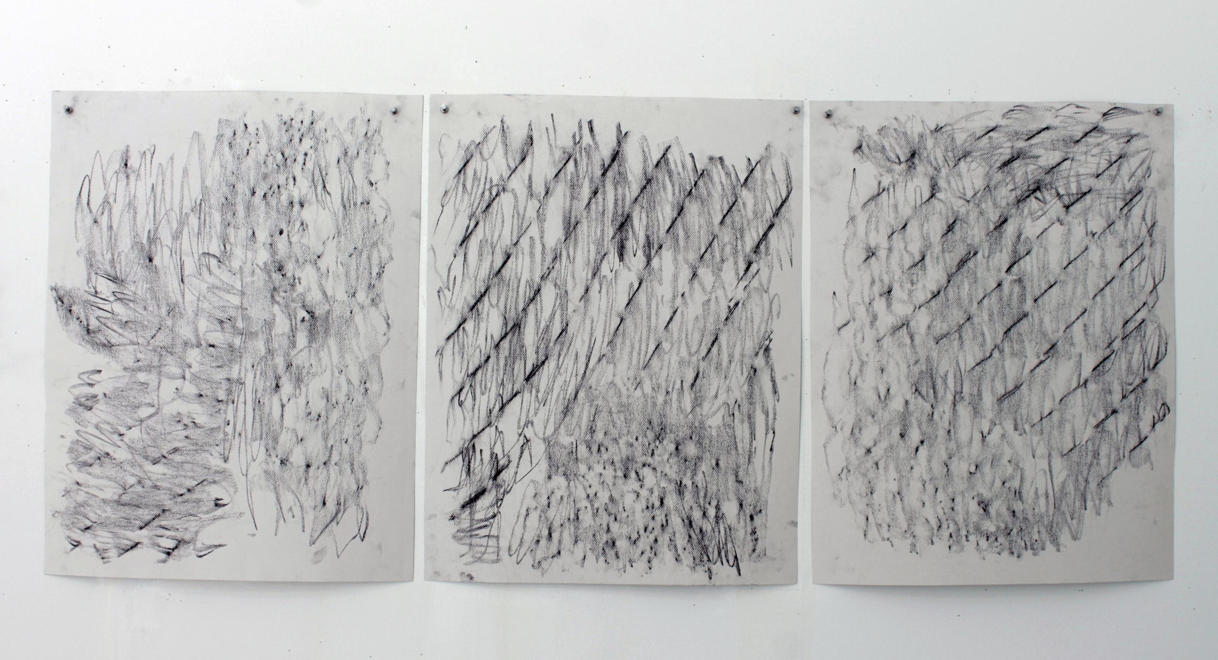 Tree Fence Impressions, 2014