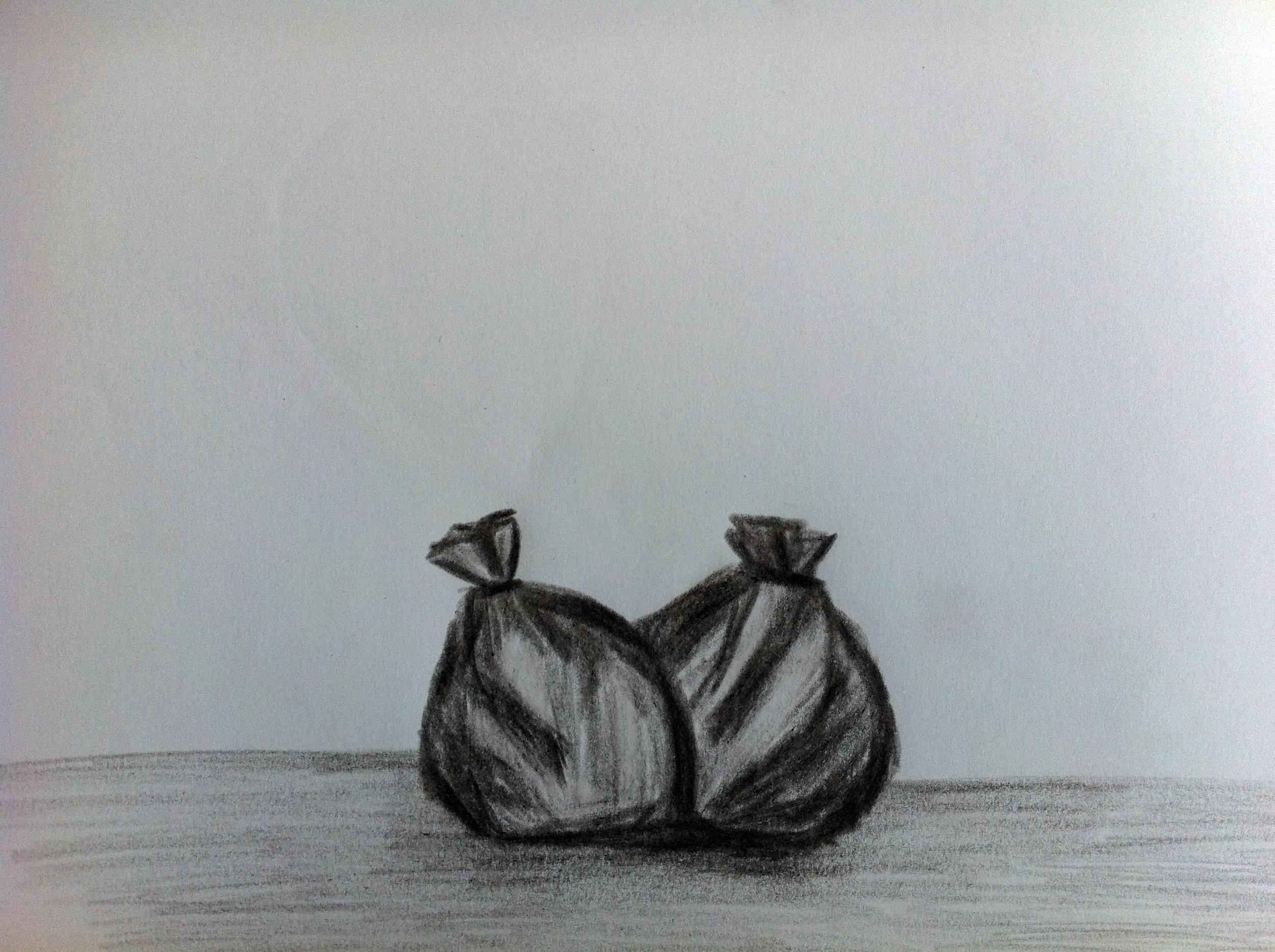 two-bags.jpg