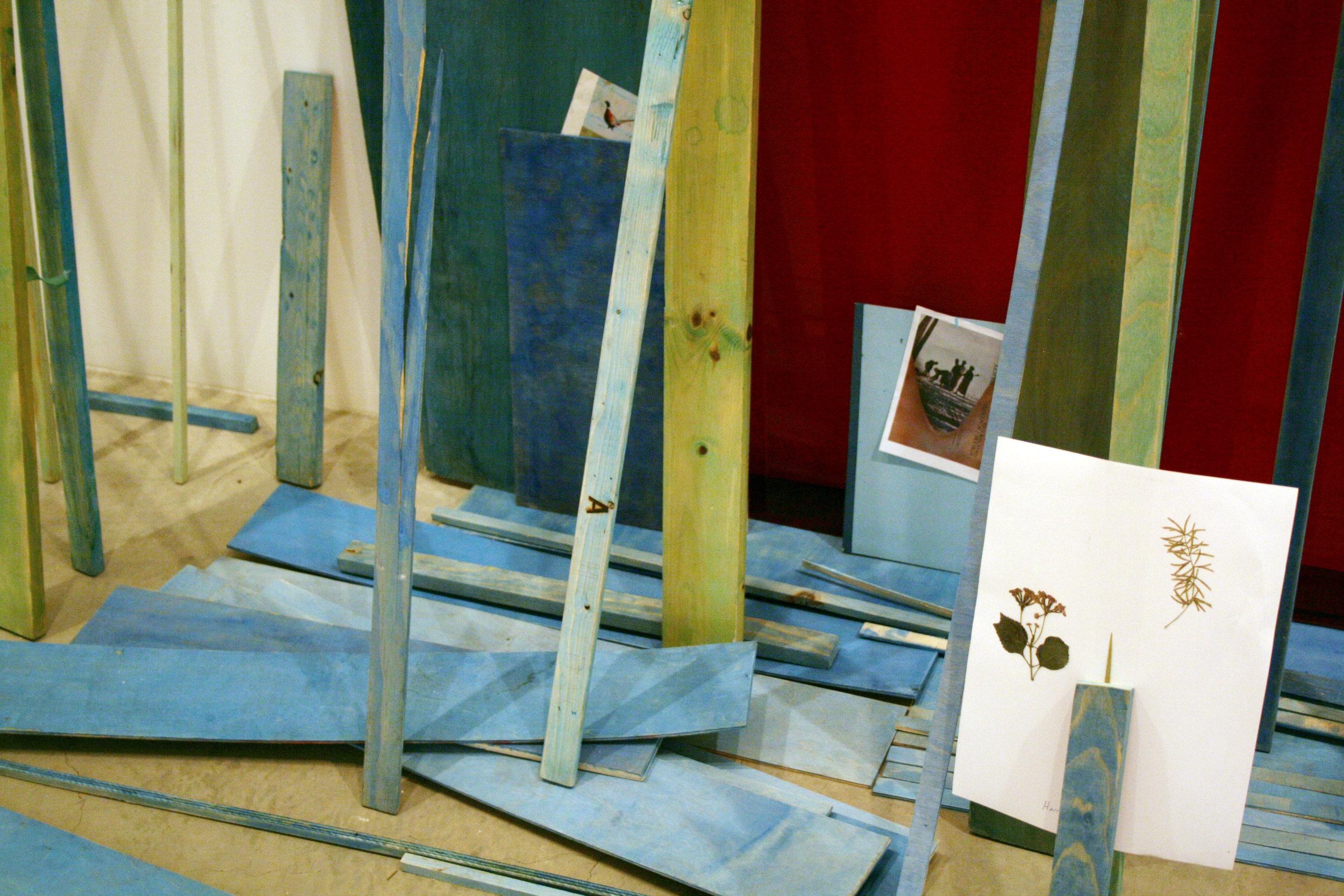 Studio Photograph, A - Pheasant Fine, Lehman Art Center, 2008 -