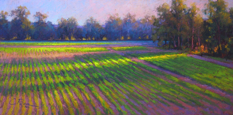 Light on New Fields