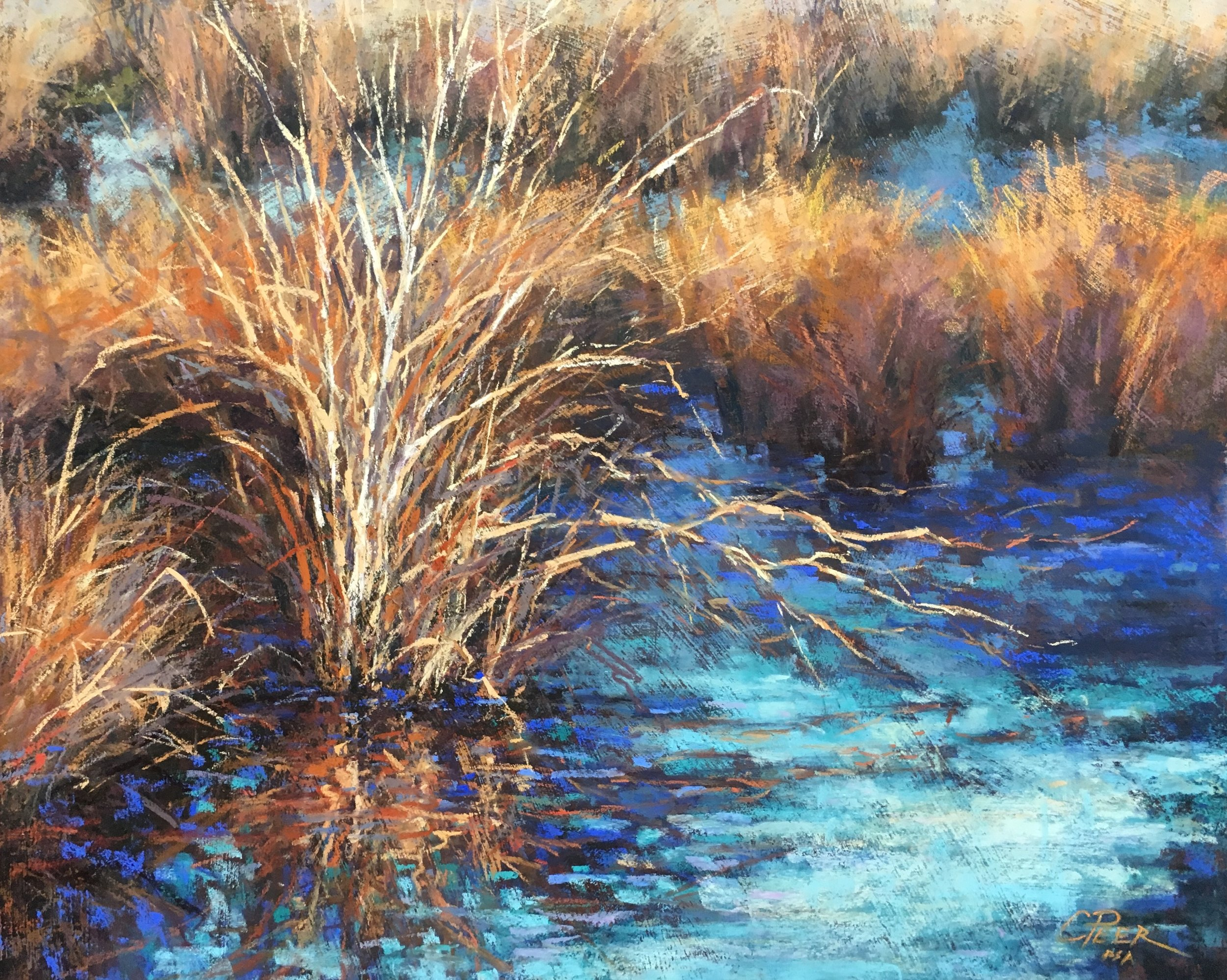 Wetland Grasses - Winter