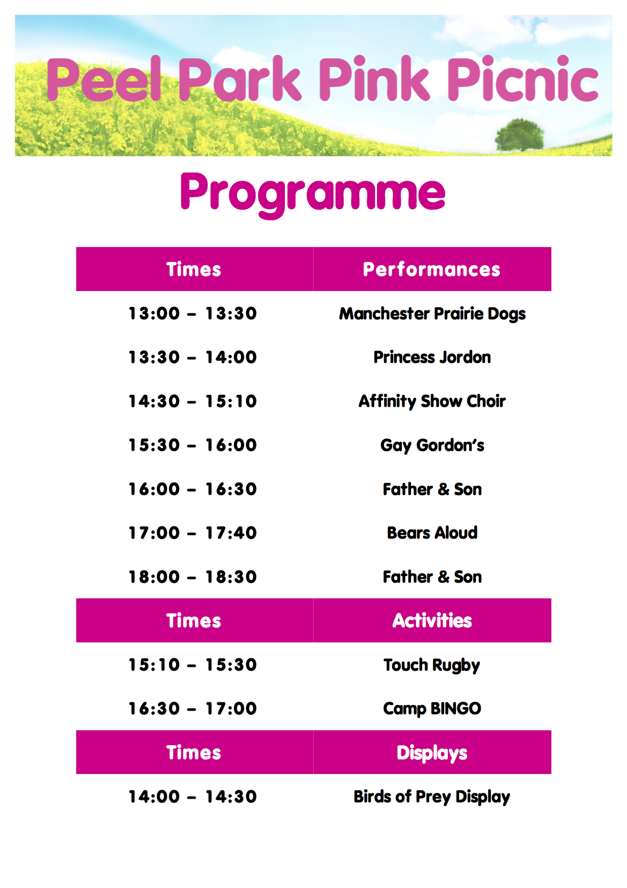 PPPP3 Programme 2013.png