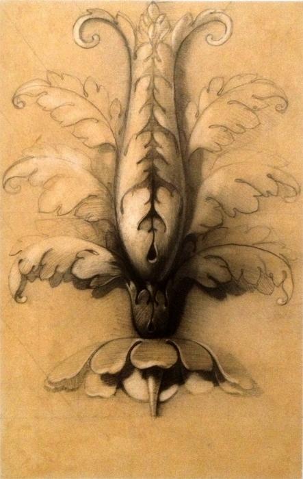 Botanical Ornament for Architecture ©jameslangley